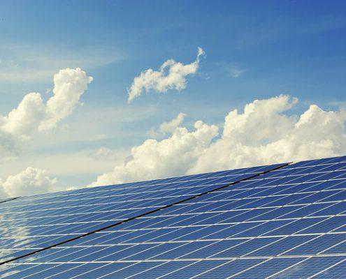 Inkoopactie Stichtse Vecht oogst zonnestralen